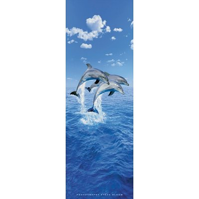 Wooden Whale Wall Art front-1055766