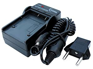 Amazon.com : Charger for Nikon EN-EL9 ENEL9 D40 D-40 MH-23 D40 D40X