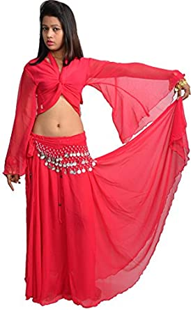 3 Peice Chiffon / Georgette Belly Dance Costume