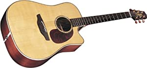 Takamine Supernatural Series TAN16C Dreadnought Acoustic Electric Guitar, Natural with Case