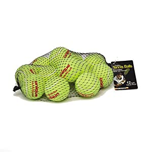 Unique 18-Pack Mesh Bag of Pressureless Tennis Balls