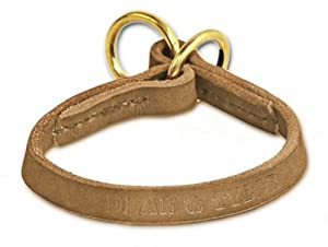 "Dean and Tyler ""TRANQUILITY"", Leather Dog Choke Collar with Solid Brass Hardware - Tan - Size 18-Inch by 1/2-Inch - Fits Neck 16-Inch to 18-Inch"