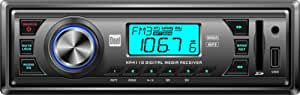 Dual XR4110 In-Dash MP3, WMA, AM/FM Receiver with Front Panel USB, SD Card, and 3.5mm Aux Inputs (Gray)