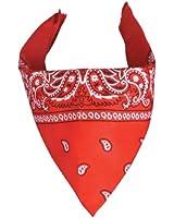 Bandana rouge foulard paisley (red)