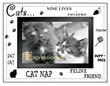 41kBTBjsO9L. SL160 KITTY CAT LOVE etched glass EXPRESSIONS keepsake frame 4x6