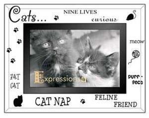 KITTY CAT LOVE etched glass EXPRESSIONS keepsake frame