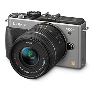 Panasonic Lumix DMC-GX1K 16 MP Micro 4/3 Compact System Camera with 3-Inch LCD Touch Screen and 14-42mm Zoom Lens (Silver)
