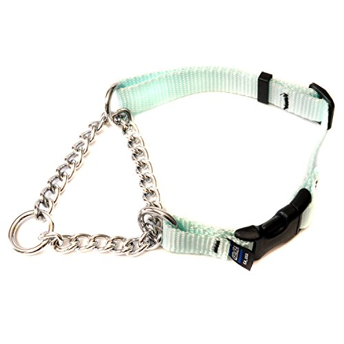 Chain Martingale W/ Quick Release - Small - Baby Blue - Dog/Pet Collar front-1012492