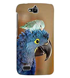 ColourCraft Cute Parrots Design Back Case Cover for HUAWEI HONOR HOLLY