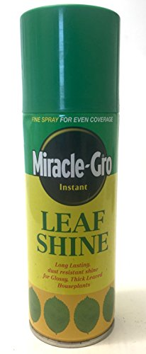miracle-gro-leaf-shine
