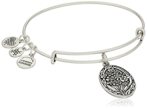 Alex and Ani Because I love you, Grandmother II Expandable Rafaelian Silver Finish Bracelet