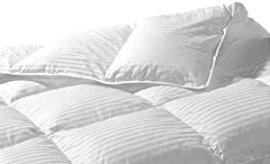 Highland Feather Manufacturing 36-Ounce Santa Monica Goose Down Duvet, Twin, White