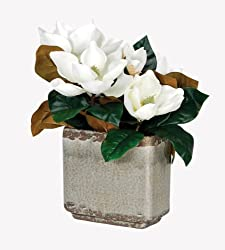 Artificial Magnolia Blooms in Crackled Gray Vase