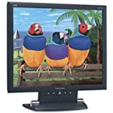 ViewSonic VA1903wb Ecran PC LCD TFT 19&#34; cran large 1440 x 900 300 cd/m2 700:1 5 ms 0.285 mm VGApar Viewsonic