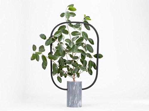 a006-apuana-corporate-portafiori-petit-mod-baobab-b-designer-davide-aquini