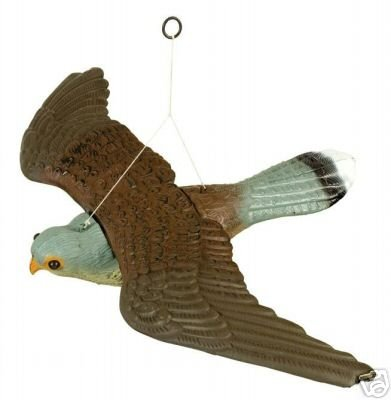 Decoy flying falcon bird of prey