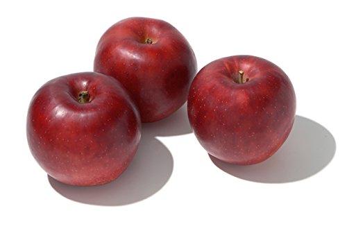 長野県産 りんご 紅玉 Mサイズ 20〜25個入り 4.5kg