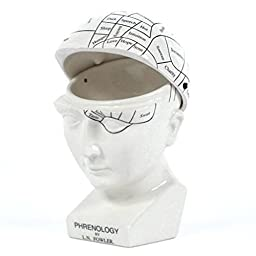 L.n. Fowler Phrenology Head Science Hinged Trinket Box 7 Inch Novelty Gift