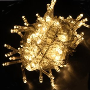 Warm White LED Fairy Light String Holiday Lights