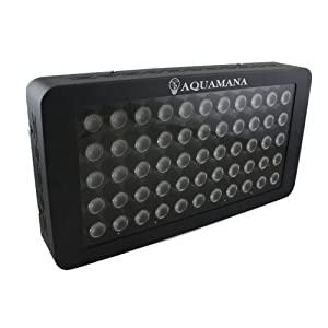 AQUAMANA AQ LED-55x3W Dimmable 165W Full Spectrum LED Aquarium Light Panel for Reef, Coral & Fish
