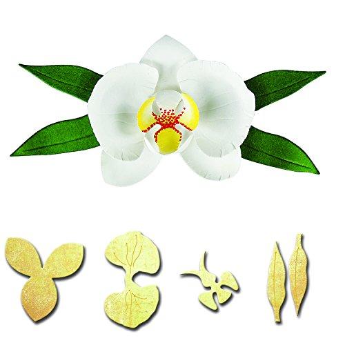 spellbinders-die-orchidee