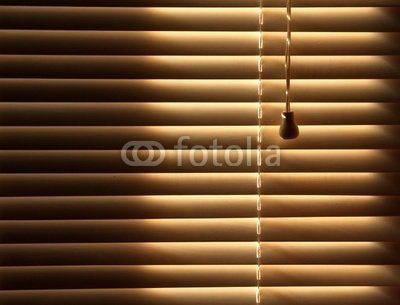 """Wallmonkeys Peel and Stick Wall Decals - Closed Venetian Blinds Background - 18""""W x 14""""H Removable Graphic"""