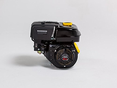 Lifan LF168F-2BRQ 6.5 HP 196cc 4-Stroke OHV Industrial Grade Gas Engine with 2:1 Centrifugal Wet Clutch Reduction, Recoil Start, and Universal Mounting Pattern picture