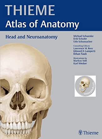 Neuroanatomy through clinical cases pdf