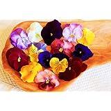 Fresh Edible Flower Pansy - 25ct