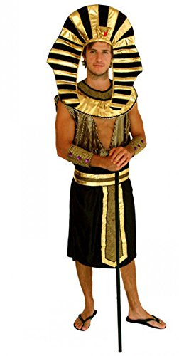 Treasure-box Adult Gold Black Akhnaton Pharaoh Costume Halloween