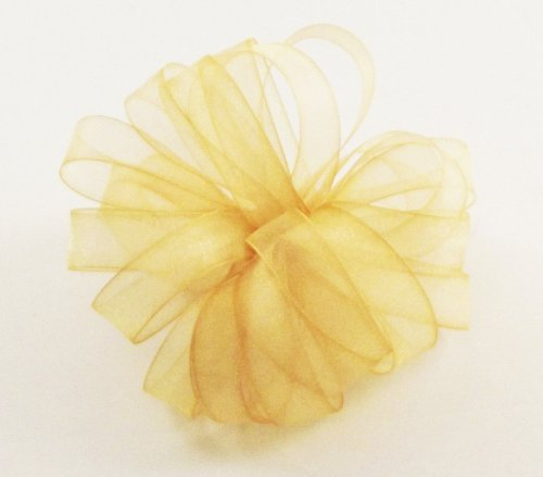 Offray Lady Chiffon Sheer Craft Ribbon, 5/8-Inch Wide by 100-Yard Spool, Dijon