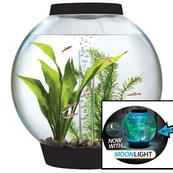 baby biOrb 4-Gallon Moonlight Aquarium with Light Fixture, Black