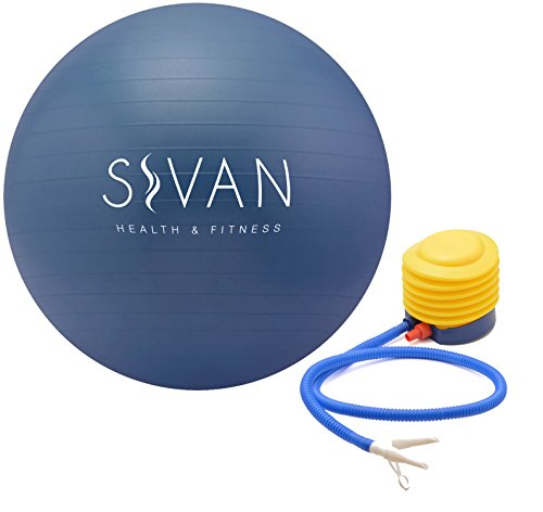 Sivan Health and Fitness Anti-Burst Stability Gym Ball, and Pump (52cm, Blue)