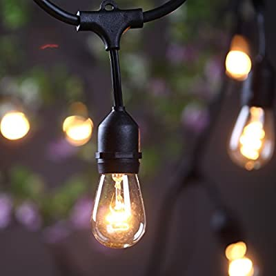 Outdoor Commercial String Globe Lights 24 Feet Long with 12 Hanging Dropped Sockets- 12 S14 Incandescent Bulbs and 6 Extra Included- 14 Gauge Black Wire Heavy Duty Weatherproof Light Strings