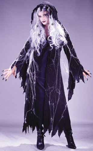 Spider Web Ghost Witch Adult Costume
