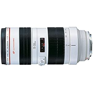 Canon EF 70-200mm f/2.8L USM Telephoto Zoom Lens for Canon SLR Cameras