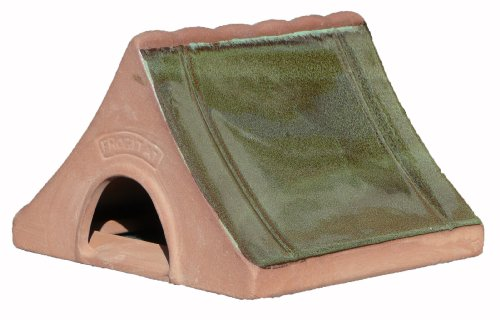 Wildlife-World-Ceramic-Frog-and-Toad-Home