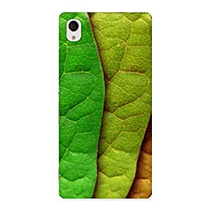 Pattern Leaf Back Case Cover for Sony Xperia M4