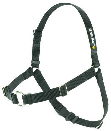 SENSE-ible No-Pull Dog Harness - Black Medium/Large (Narrow) by Softouch (Bird Harness Medium compare prices)