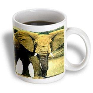 3Drose African Elephant Mug, 15-Ounce