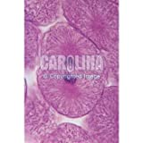 Fish and Onion Mitosis Microscope Slide and Study Guide Set