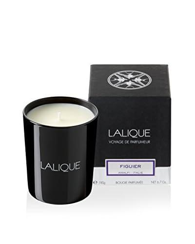 Lalique Figuier 190 Gram Candle, Black, 4X3X4