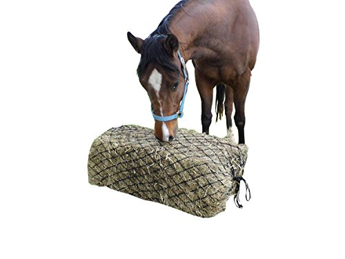 Derby Originals Hankering Horse Slow Feed Bale Net, 55