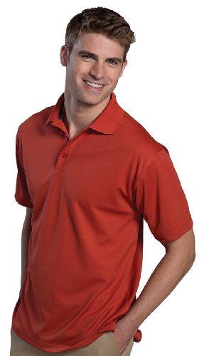 Ed Garments Men'S Big And Tall Dry-Mesh Hi-Performance Polo Shirt, Cayenne, S