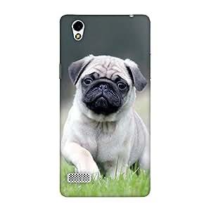 FASHEEN Premium Designer Soft Case Back Cover for Oppo Mirror 5
