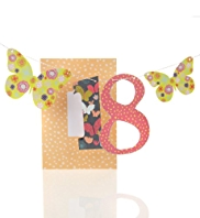 Butterfly Bunting Age 18th Birthday Card