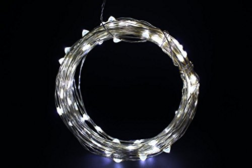 Eastchina® | Cold White Color 10M / 30Ft Led Copper Wire Lights | Led Copper String Lights | Led Copper Starry Lights | With 12V Power Supply | With Mini Single Color Flash Dimmer Controller