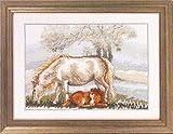 Spring Horse - Cross Stitch Kit