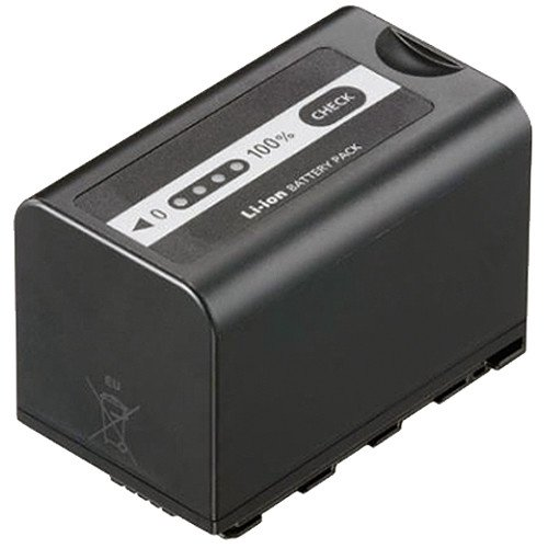 Panasonic VW-VBD58 Rechargeable Battery (Black)
