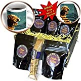 Dogs Airedale - Airedale Terrier - Coffee Gift Baskets - Coffee Gift Basket